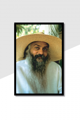 Osho World (Rajneesh) Wall Frame (2)